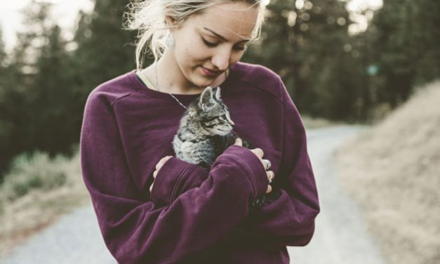 How I Learned about Subconscious Energies by Playing with a Pet in a Dream